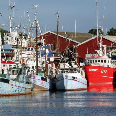 Embarcações profissionais